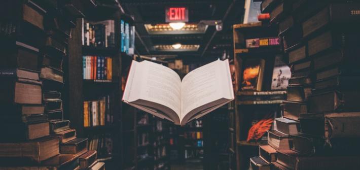 salida-lectura