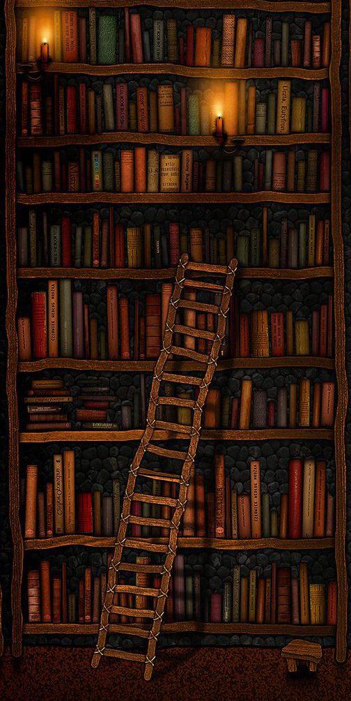 escalera-biblioteca